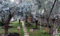 Монастырь Марии Магдалины в Гефсимании. Иерусалим.